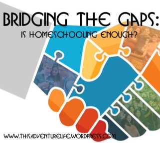 bridging-the-gap-1a